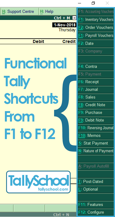 Tally 7.2 Notes Hindi Pdf