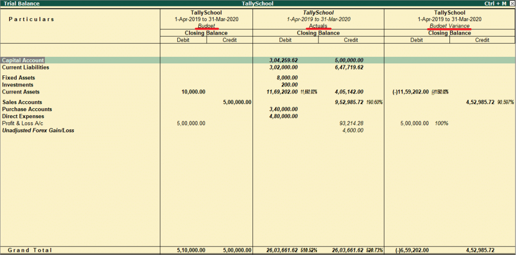 Budget inside the trial balance