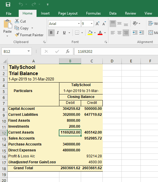 Trial Balance exported in Excel Format