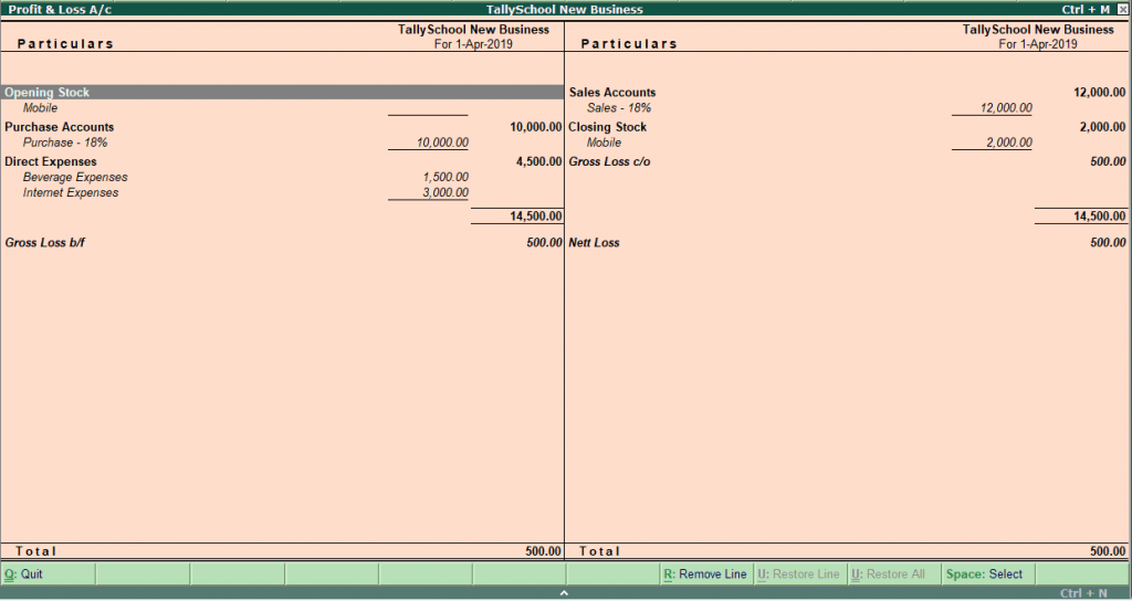Profit and Loss Account in Tally ERP 9